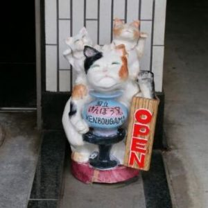 kisinosakuhi2